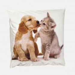 Poduszka dekoracyjna 40x40 cm Kot i Pies